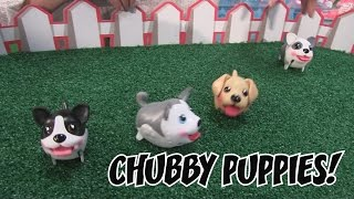 getlinkyoutube.com-Chubby Puppies - Interactive Toy Demo