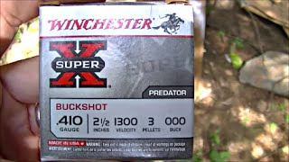 getlinkyoutube.com-Winchester .410 Predator 000 Buckshot - Deer Worthy?
