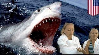 getlinkyoutube.com-Atak żarłacza białego! Dwie kobiety na kajakach cudem unikają śmierci.