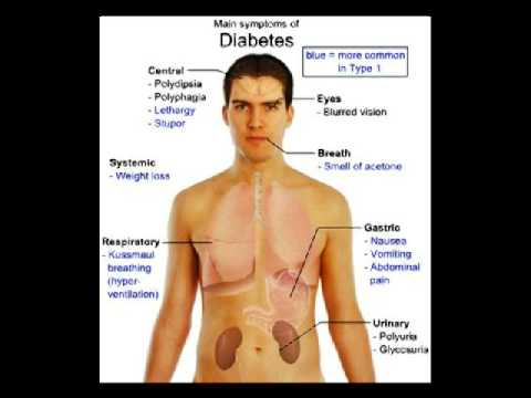 pengobatan diabetes