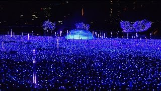 getlinkyoutube.com-Tokyo Midtown christmas illumination 2016 4K