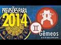 Previsões para 2014 - Gêmeos