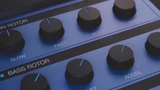 Birth of Blue3 Organ