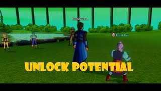 Elder Kai Unlock Potential Skill!