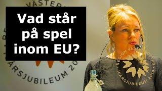 EUInMyRegion - Vad står på spel inom EU?