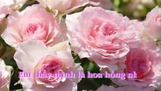 getlinkyoutube.com-Em là Bông Hồng Nhỏ - Trịnh Công Sơn / Karaoke by Tran Minh Duc