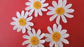 getlinkyoutube.com-РОМАШКА  CAMOMILE Crochet