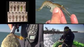 getlinkyoutube.com-Zerek Live Cherabin 'Live' in Australia - Wilson Fishing