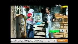 getlinkyoutube.com-مسلسل قناة الشرقية العراقية - سايق الستوتة - الحلقة السادسة - ج 1