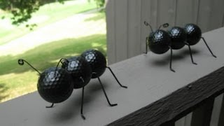 getlinkyoutube.com-Ant Crafted Out of Recycled Golf Balls and Wire Hangers