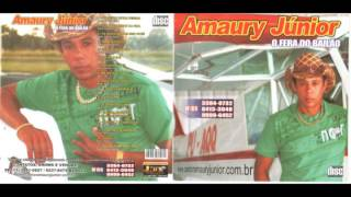 getlinkyoutube.com-Cd completo Amaury Junior vol 13