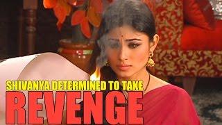 getlinkyoutube.com-Shivanya's determination to take revenge in NAAGIN