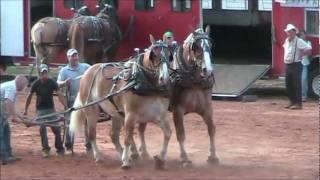 getlinkyoutube.com-Got to Be NC Festival Raleigh N.C Draft horse and mule pull 5-20-11