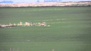 getlinkyoutube.com-coyote hunting  2 coyotes hit at 500 yards running