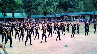 MNHS Grade 9 Level Massdance