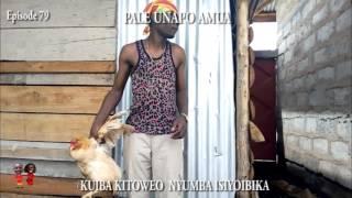 Episode 79 mwizi wa kuku