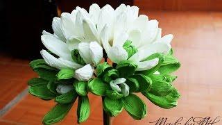 getlinkyoutube.com-Magnolia Sieboldii paper flower - Hoa mộc lan bằng giấy nhún