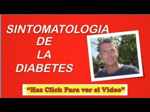 Sintomatologia De La Diabetes   Que Es La Diabetes