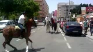 getlinkyoutube.com-VIDEO0016.mp4 Bailando sevillanas con caballos flamencos en Playa de Gandia