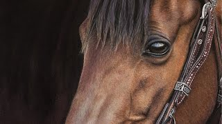 Timelapse Pastel Painting of a Horse