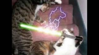 getlinkyoutube.com-Star Wars Cats