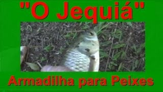getlinkyoutube.com-Armadilha Indígena para Peixes - Covo