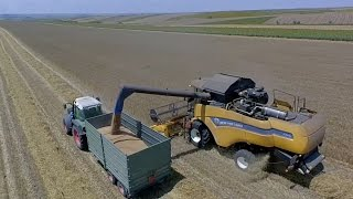 Wheat harvest 2016 Aerial View New Holland cx 6080