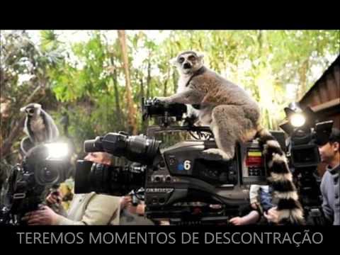 FILME PROFISSÃO CINEGRAFISTA