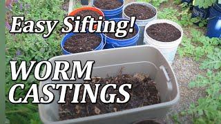 getlinkyoutube.com-Compost Worm Bin / Grow Box part4  -Sifting Worm Castings (How To)
