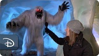 getlinkyoutube.com-The Abominable Snowman Inside the Matterhorn | Disneyland Resort