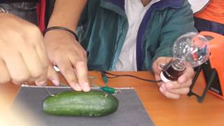 getlinkyoutube.com-Experimento para prender un foco con un pepino