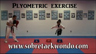Plyometric exercise for Taekwondo kids (Part 3)