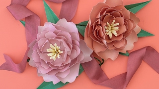 getlinkyoutube.com-How to Make a Paper Flower Peony