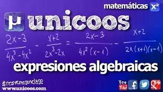 Imagen en miniatura para Expresiones algebraicas 02
