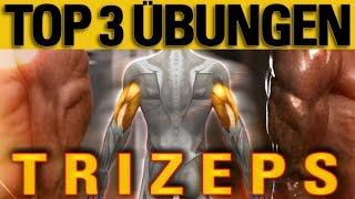 getlinkyoutube.com-Top 3 Übungen - Trizeps - mit Erklärung der Anatomie