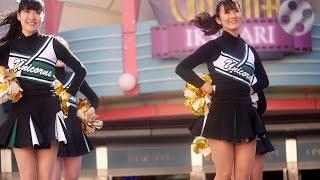 getlinkyoutube.com-Cheerleading 慶應義塾大学ソングリーダーズUNICORNSチア④FriendLike (Aladdin)