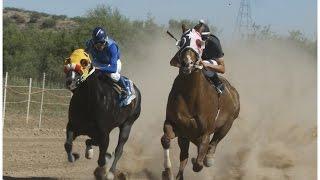 getlinkyoutube.com-Carreras de Caballos en Esqueda, Son  Rancho Los Gavilanes 14 de Junio 2015