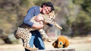 getlinkyoutube.com-My Pet Cheetah Helped Me Through Cancer