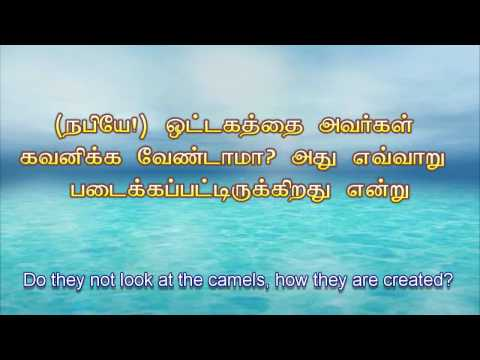 Tamil Quran- 88 Surat Al-Ghāshiyah (The Overwhelming) - سورة الغاشية