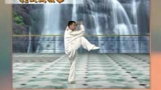 42式太極拳 - 陳思坦
