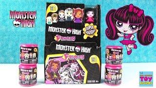 getlinkyoutube.com-Monster High Fashems Full Box Set Blind Bag Opening   PSToyReviews