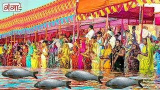 बरत राउर कइली मछरिया | New Chhath Geet 2017 | Chhath Puja Songs Special 2017