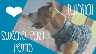 getlinkyoutube.com-♥Cómo hacer un sweater / chaleco para perro♥