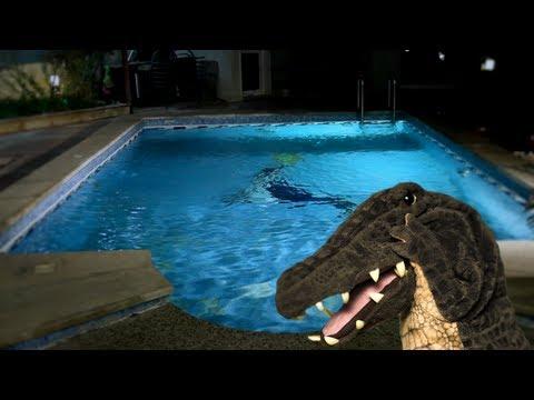 التمساح الحلقة ٤٧: التشويقية القريبية  | Temsa7LY