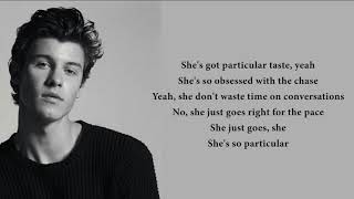 Shawn Mendes - Particular Taste (lyrics)