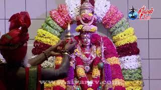 ஜேர்மனி - ஹம் ஸ்ரீ காமாட்ஷி அம்பாள் திருக்கோவில் தேர்த்திருவிழா 07.07.2019