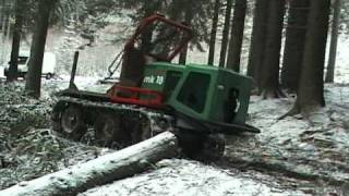 getlinkyoutube.com-Forest Horse - Engineeringblatna.cz