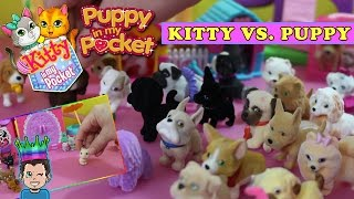 getlinkyoutube.com-Puppy in my Pocket vs. Kitty In My Pocket - Cats vs. Dogs!