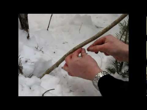 Lièvre: Comment tendre et fabriquer un collet