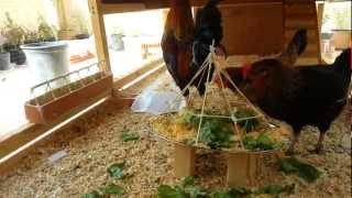 getlinkyoutube.com-طريقة صنع مأكلة لدجاج بشكل مطور